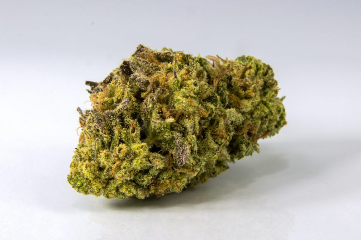 Laughter is the best specimen when you spy  an unidentified denizen of space of time who said cookies aren't medicine?  THC: 22.2%